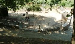 Nova zona de pícnic a la Font del Prat