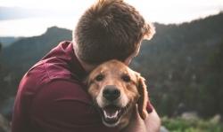 Benestar animal