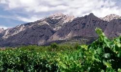 Parc Rural de Montserrat