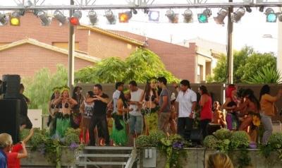 Festa de la diversitat 2011