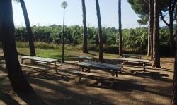 Parc Berroya